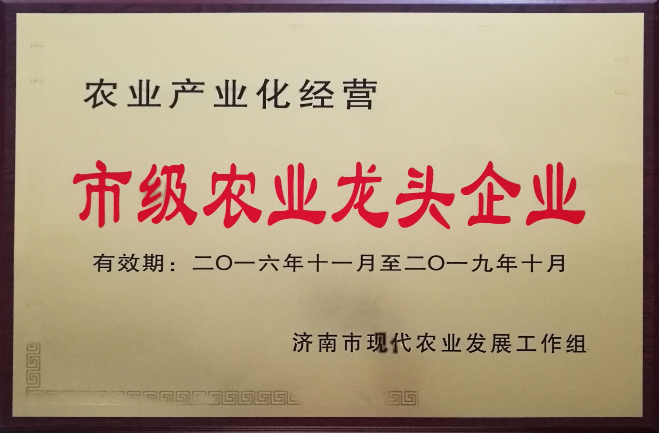龙头企业.jpg